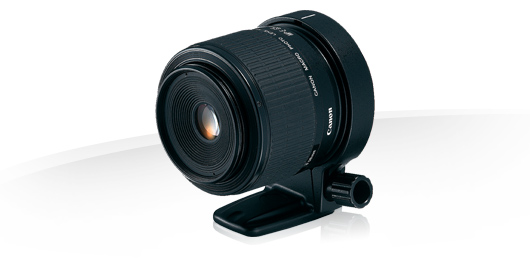 Location-MP-E-65mm_f2.8